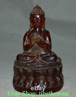 8.4 Old Chinese Red Amber Shakyamuni Amitabha Buddha Sculpture Statue