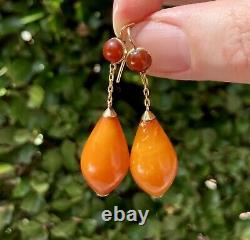 Antique Edwardian Era 14K Yellow Gold Butterscotch & Cherry Amber Drop Earrings